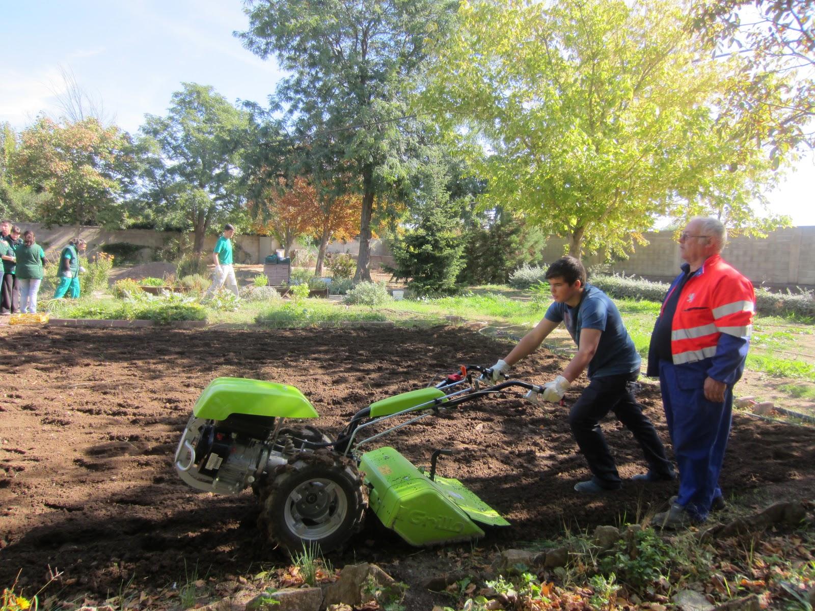 Escuela municipal de jardiner a el pinar conocemos un for Escuela de jardineria