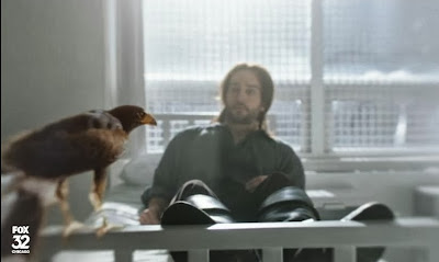 Sleepy Hollow Ichabod bird