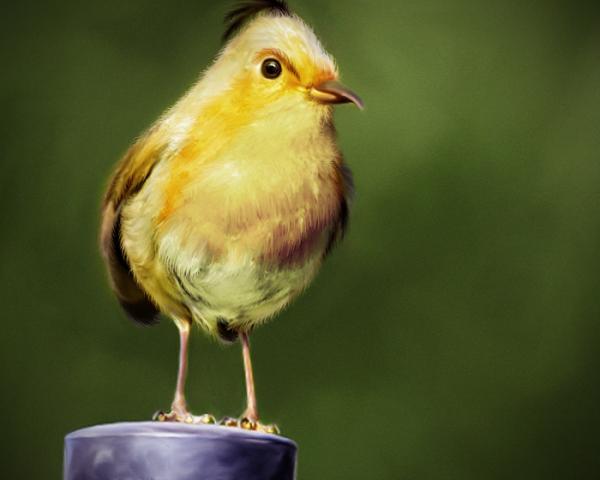 Tokoh Karakter Angry Bird di Dunia Nyata