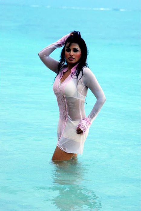 aarthi puri in water latest photos