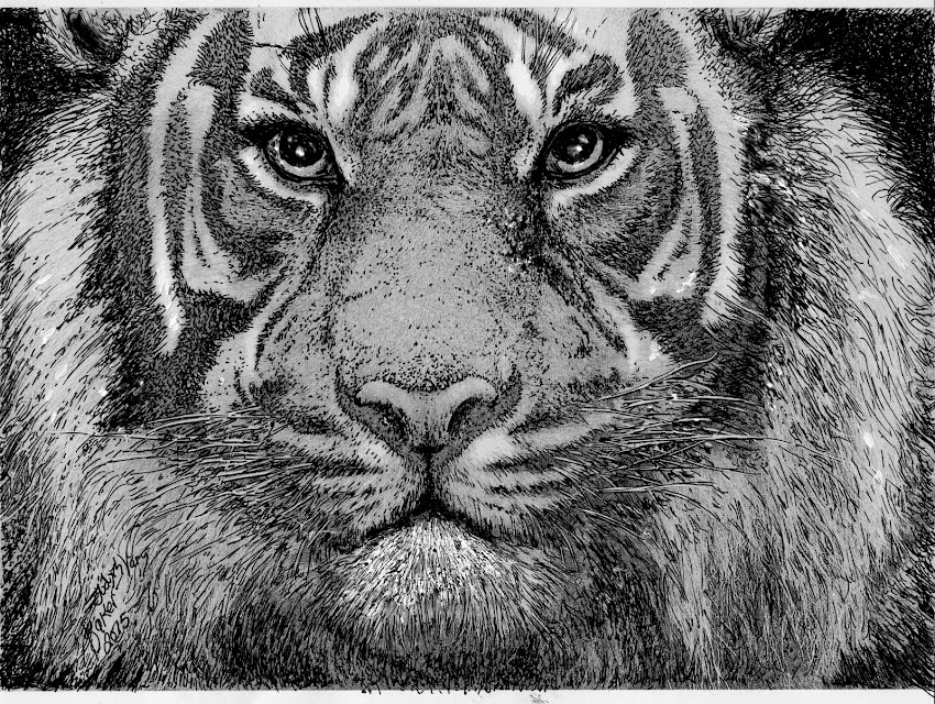 """Tiger""  Buy Art and Help Support Our Conferences!"