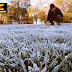 Autoridades recorren zonas afectadas por heladas en región del Maule