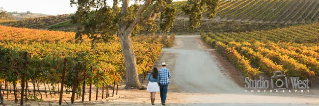 engagememt couple in vineyard