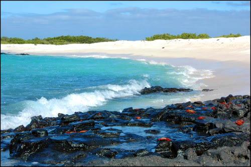Ilhas Galápagos - Equador