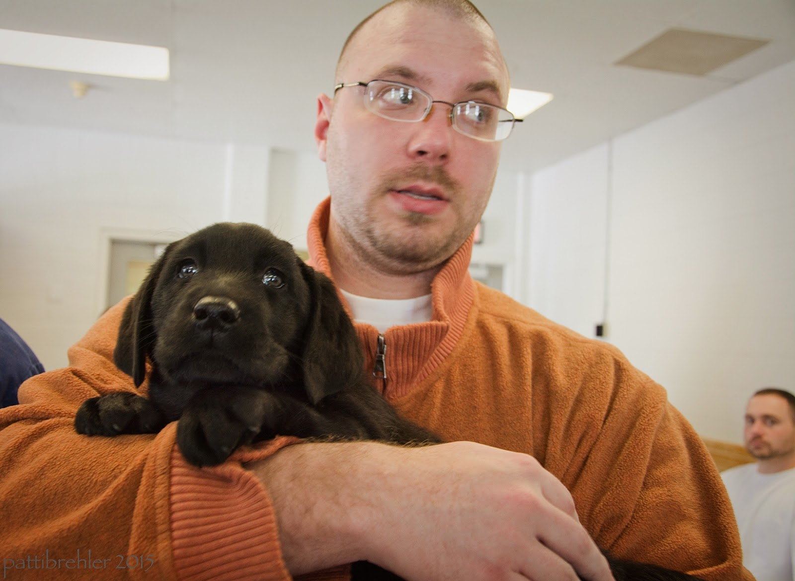 The man dressed in orange is holding the lab puppy with his right arm. The man and the puppy are both wide-eyed, looking toward the camera.