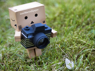 Danbo Wallpaper hd 1 photography