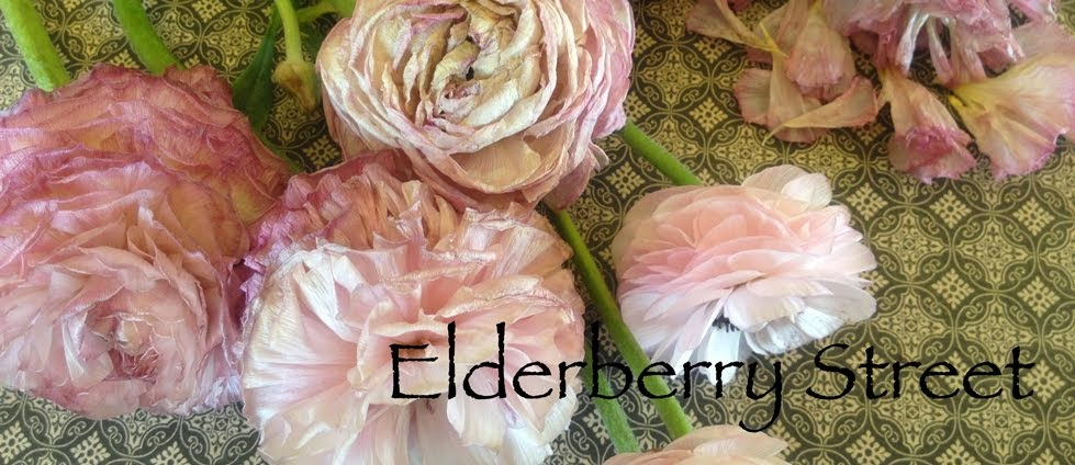 Elderberry Street