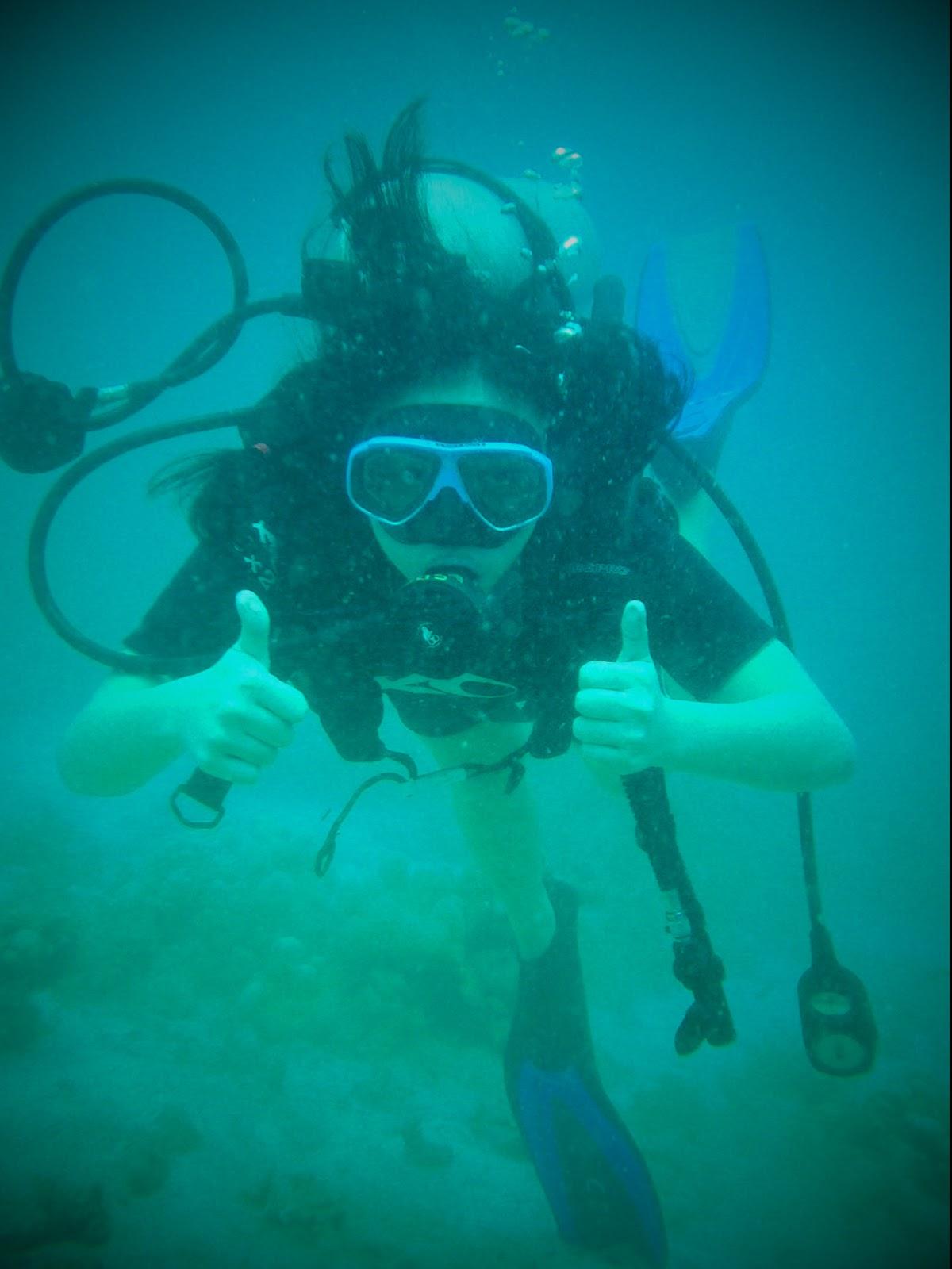 1 из 2) scuba diving experience essays Scuba Diving Essay Research Paper The underwater (стр.