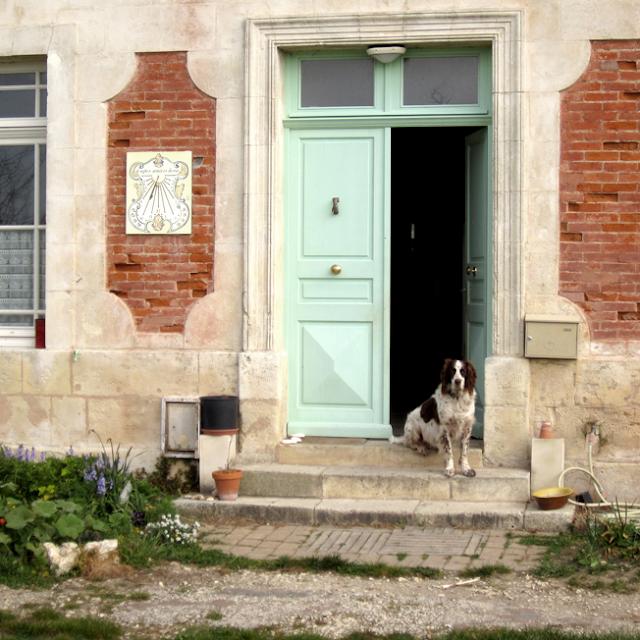 l'Ile d'Aix - http://spicerabbits.blogspot.fr/