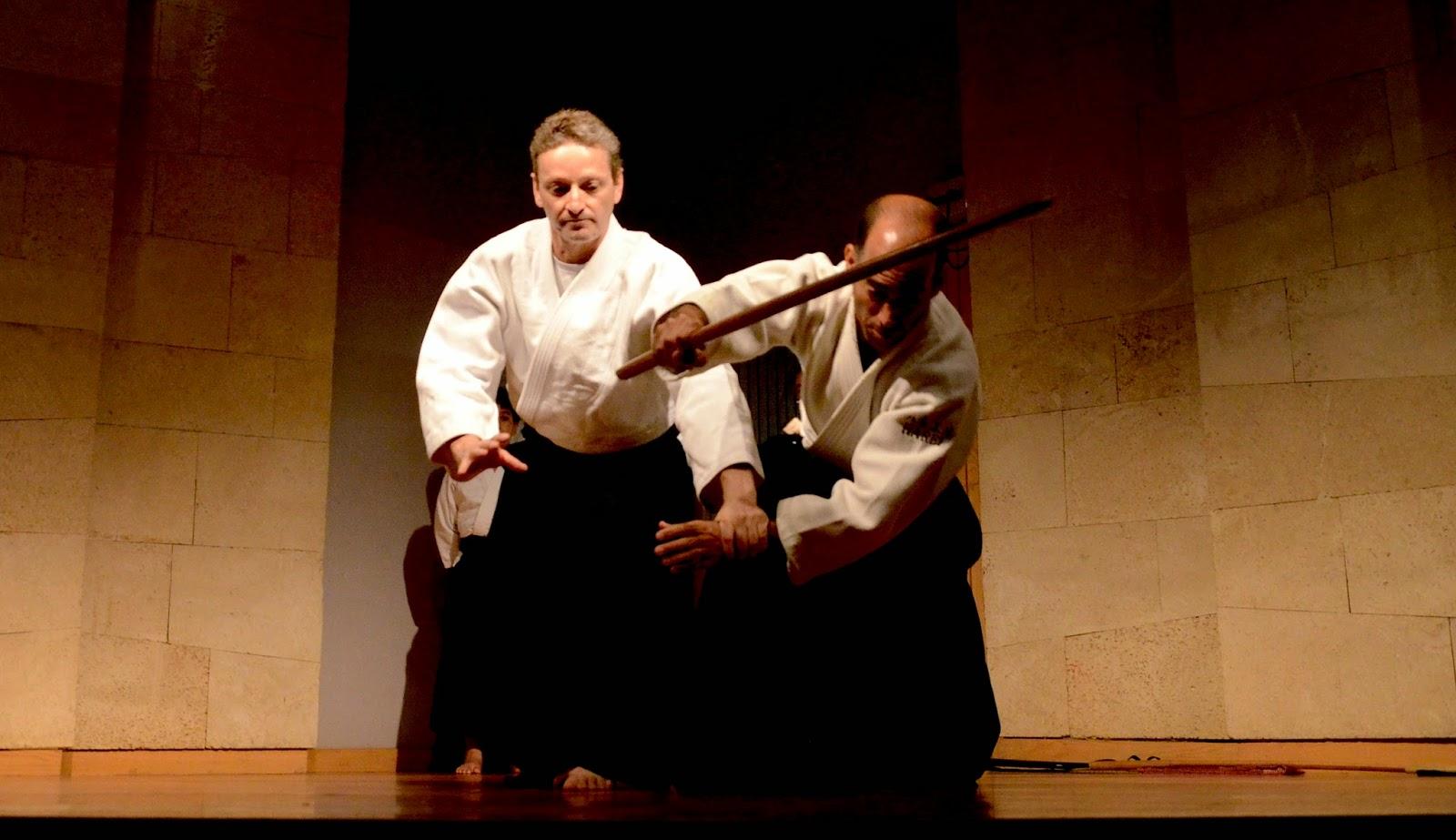 ערן ניר והראל אברוצקי בהדגמת אייקידו במוזיאון היפני בחיפה (מוזיאון טיקוטין לאמנות יפנית). צילמה: אשרת ניר  2014 ©