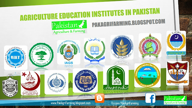 list of agricultural education institute in pakistan