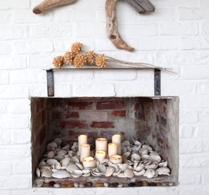 shell display in fireplace