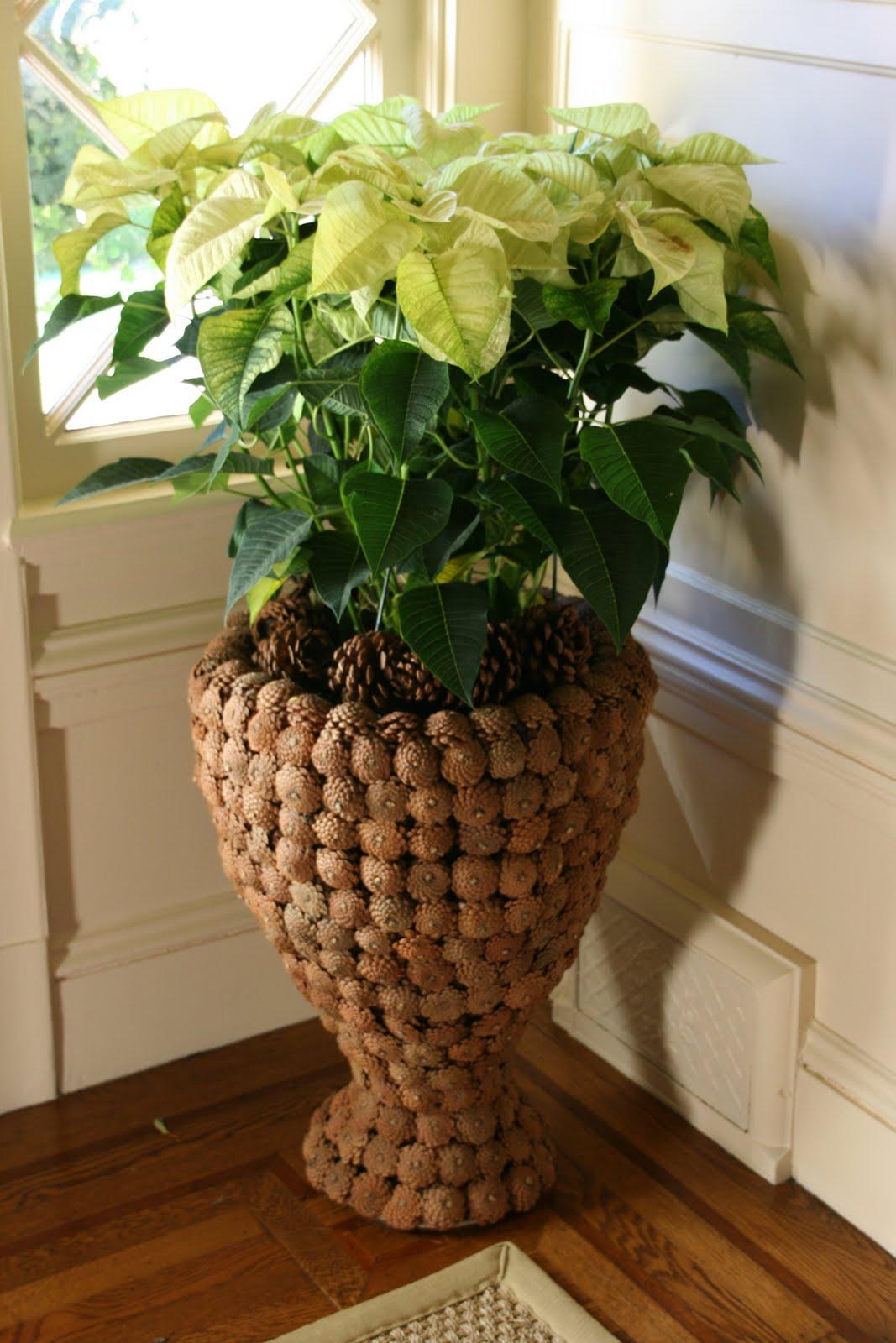 vignette design pine cone love