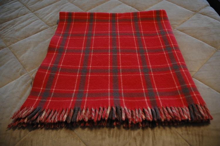 rug steamer - rugs ideas
