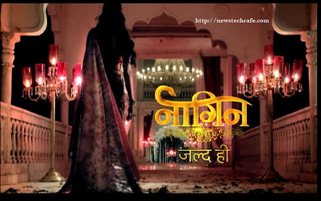 Naagin Colors Tv Wallpaper