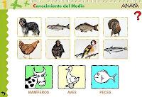 Clasifica mamíferos, aves y peces