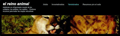 https://irenejorrin.wordpress.com/vertebrados/mamiferos/