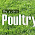 Poultry Town Katerini ΝΕΟΣΣΟΙ ΠΟΥΛΙΑ ΠΟΥΛΑΔΕΣ ΚΟΤΕΣ ΡΑΤΣΑΣ