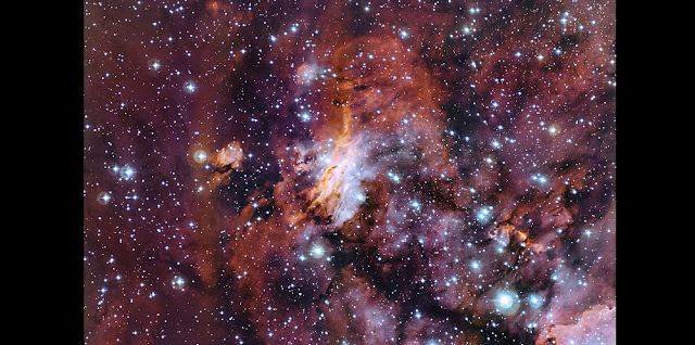 The rich patchwork of gas clouds in this new image make up part of a huge stellar nursery nicknamed the Prawn Nebula (also known as Gum 56 and IC 4628). Taken using the MPG/ESO 2.2-metre telescope at the La Silla Observatory in Chile, this may well be one of the best pictures ever taken of this object. It shows clumps of hot new-born stars nestled in among the clouds that make up the nebula. Credit: ESO