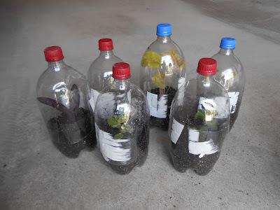 2 liter propagators