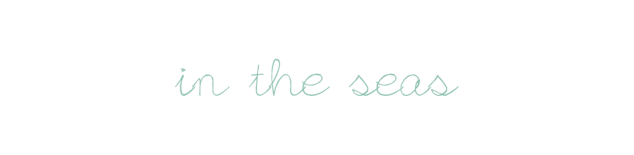 in the seas