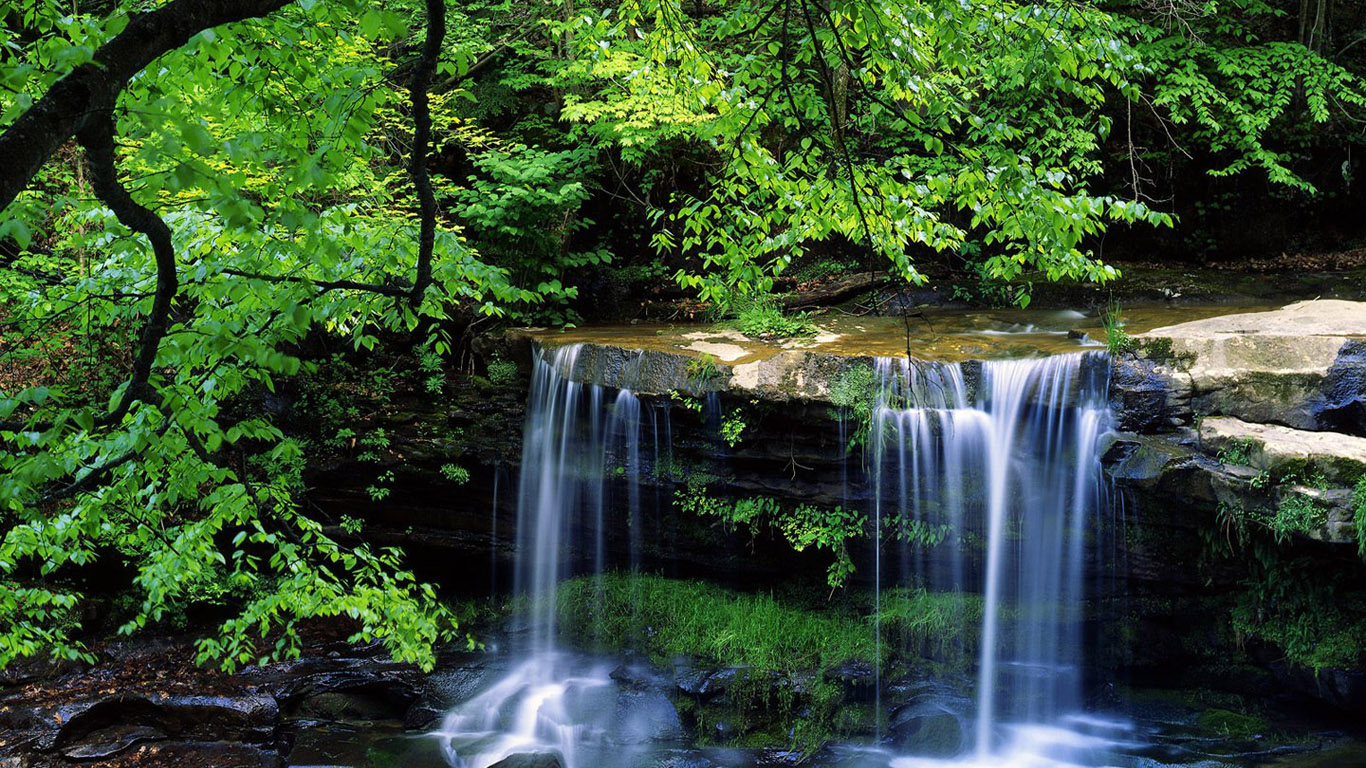Wallpapers  Images  Pictures  Photos: Nature Wallpaper hd 1366x768