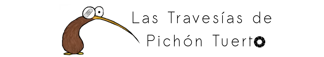 Las Travesías de Pichón Tuerto