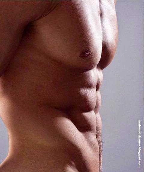 the beauty of male torso photo