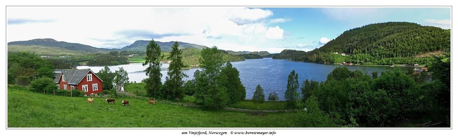 Vinjefjord