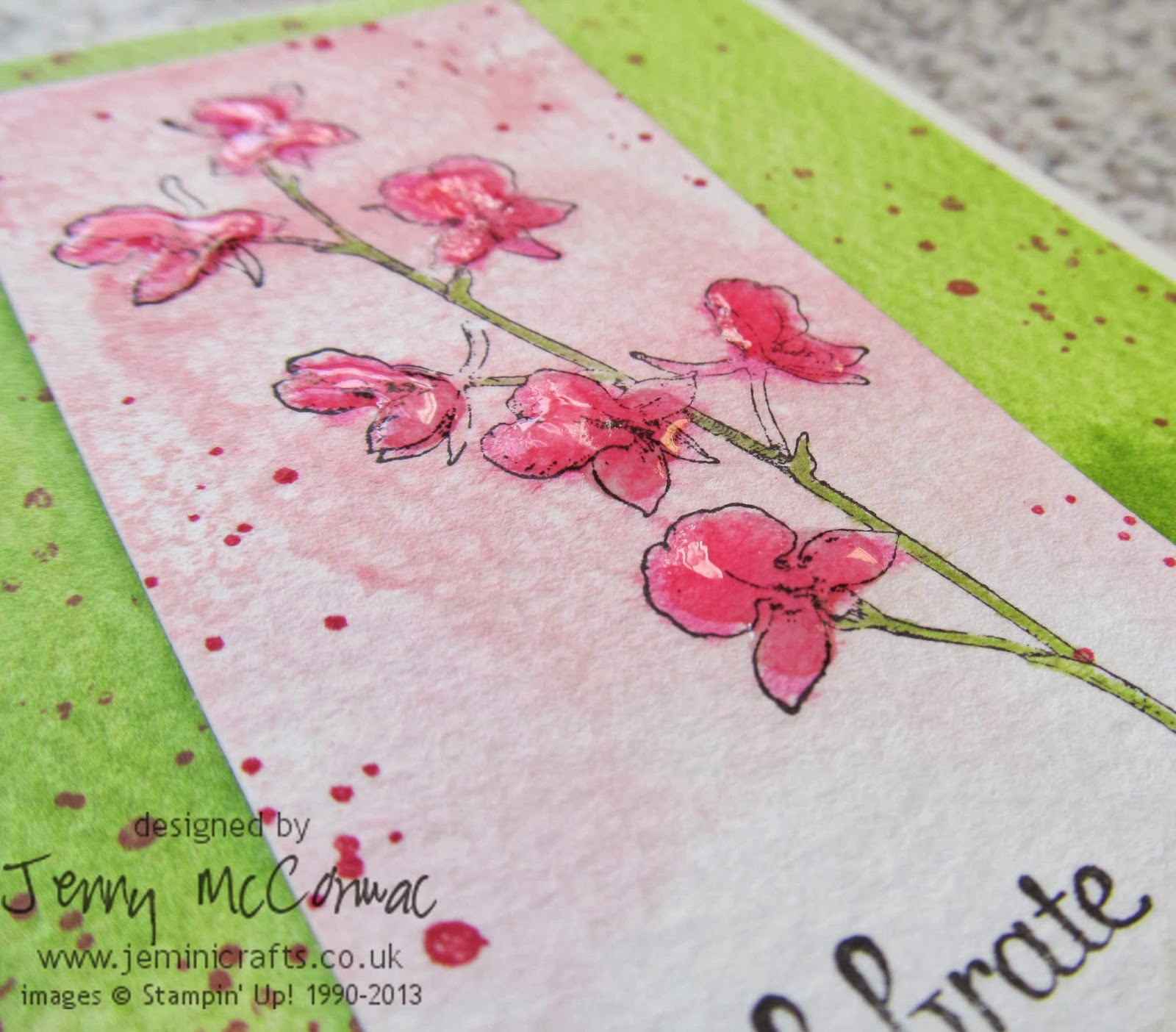 Stampin Up Watercolour Cards 2014 www.jeminicrafts.co.uk