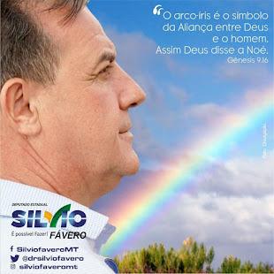Dep. Estadual Silvio Fávero PSL-MT