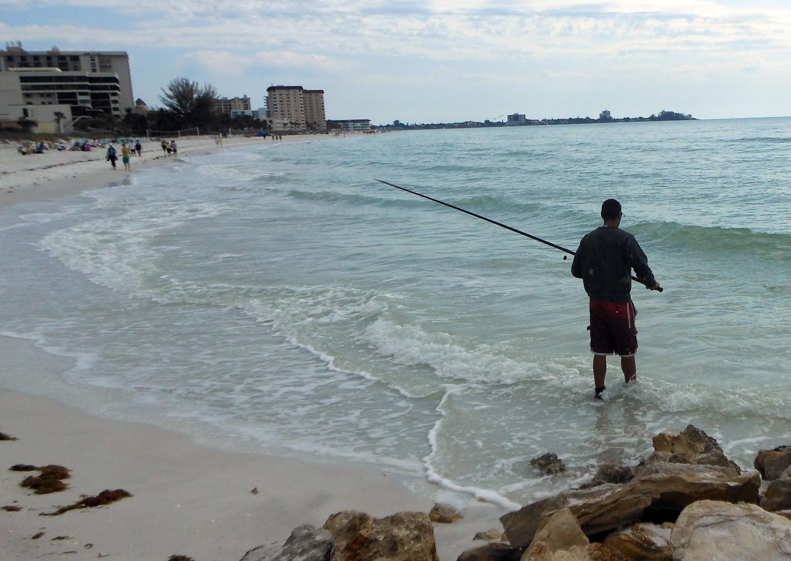Southwest florida shoreline studies surf fishing on south for Surf fishing florida