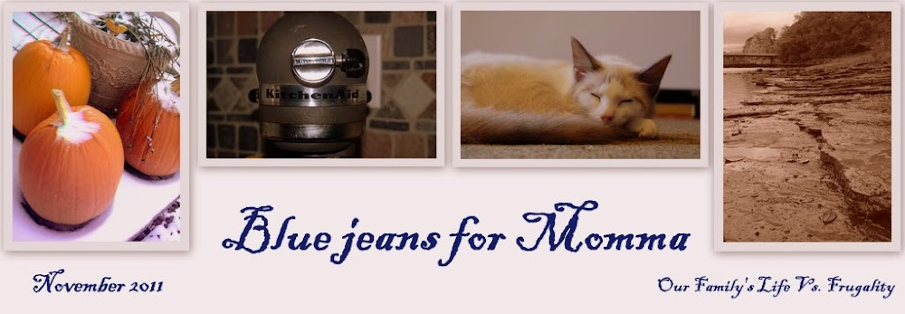 ~~~~~~Bluejeans For Momma~~~~~