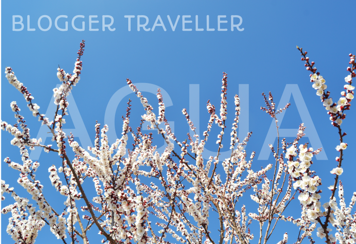 Blogger Traveller Abril 2014: AGUA