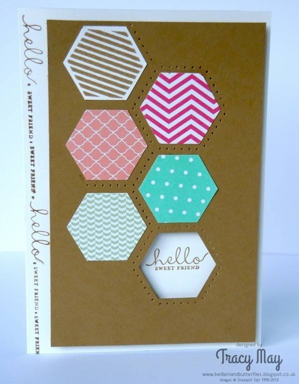 Stampin Up Six Sided Sampler demonstrator Tracy May card making