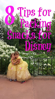 Find out how to save money at Disney by planning ahead and packing snacks. 8 Tips to Maximize your savings.
