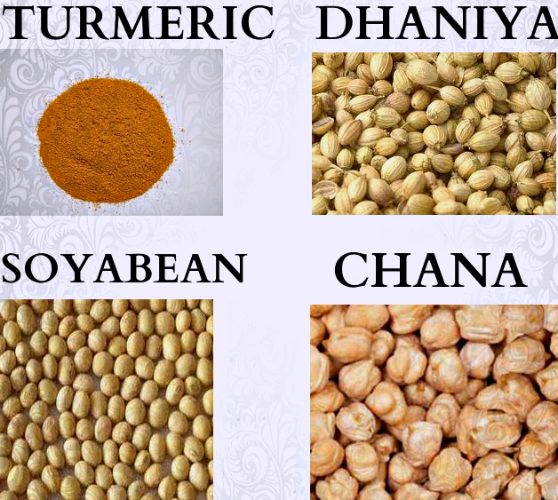 Agri Commodity Tips, Chana Tips, commodity free tips, Commodity intraday tips, Dhaniya Tips, MCX Tips Services, share market, SoyaBean  Tips, Turmeric Tips,