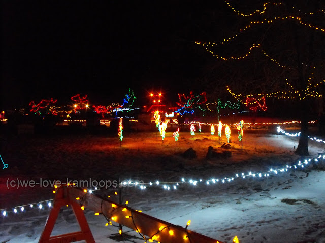 light displays in the park