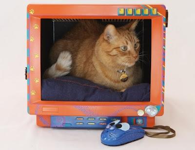 Casa para gato con monitor reciclado