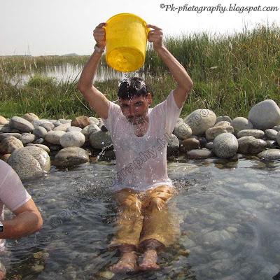 Summer Fun Picture