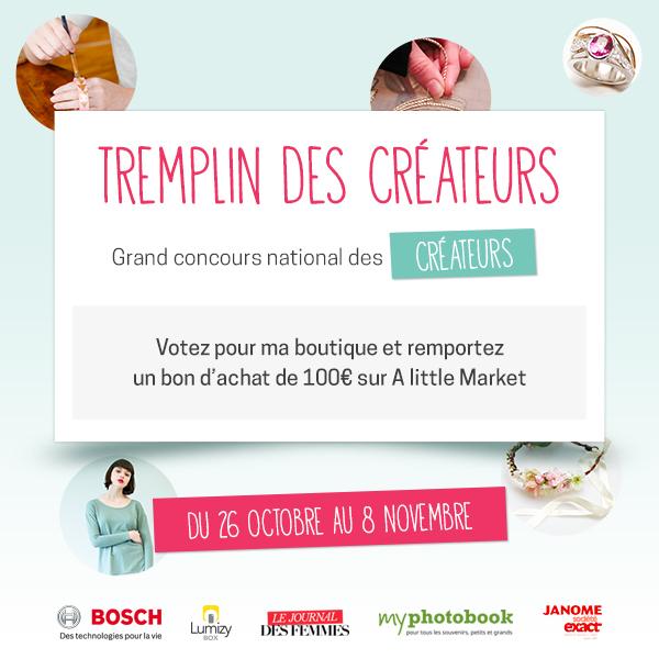 http://www.tremplindescreateurs.fr/contestant/860.html