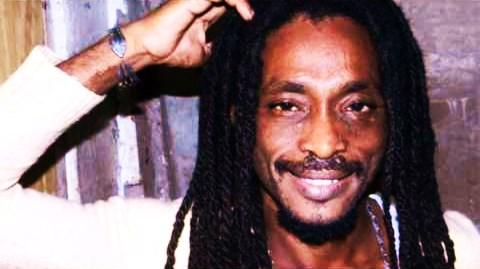 Fabian Marley Outraged After DNA Test Reveals Bob Marley ...