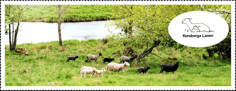 Korsberga Lamm