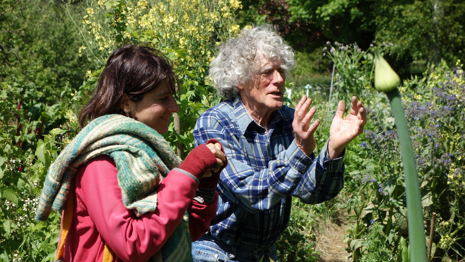 Permaculture Et Transition En Pays Catalan Visite Du