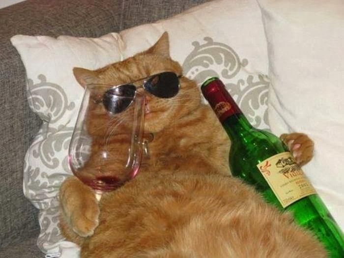 EL PRIMO DE MILORD CAT