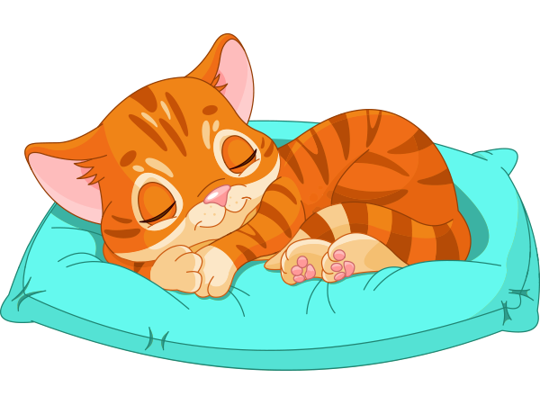 Sleepy Cat Icon