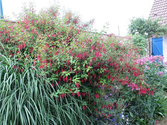Le vieux clos le jardin du chat vert for Le jardin du pic vert