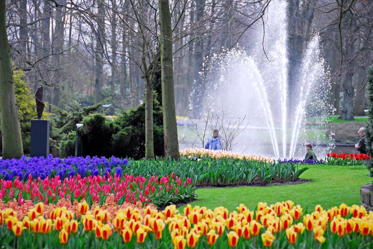 Curiosidades del mundo parque keukenhof holanda - Jardines de tulipanes en holanda ...
