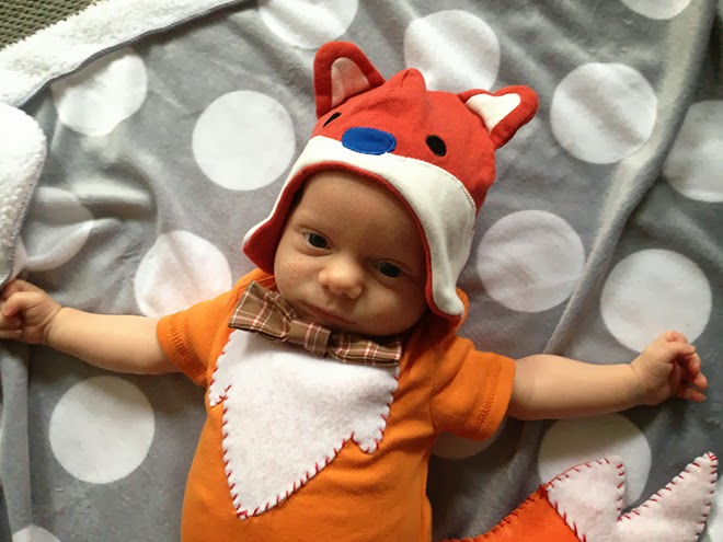 adorable baby fox costume made from custom and store bought materials. via, Oh! Hopscotch!