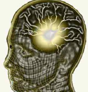 Gelombang Theta dalam otak (frekuensi 0,5 - 4 Hz) 2